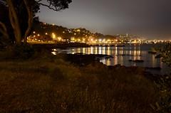 Lyall Bay at night (K Haigh) Tags: ocean sea newzealand night dark grey streetlights nz wellington coastline pohutukawa lyallbay