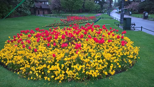 Bournemouth Gardens on May (1) by Robert Potter