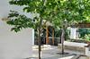 3 Bedroom Beachfront Villa - Paros #5