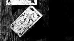 TRUE direction (* Mel Fisher *) Tags: show monochrome smile up closeup corner way point deutschland blackwhite focus pin wind know spirit details go perspective free follow unterwegs more direction help laugh change arrow unusual minimalism schwarzweiss lowkey higher better upgrade oben baum blick muster forward weg upwards holdon halt richtung drak wegweiser pfeil baumstamm stopp hach umweg nordost vorwrts nderung losgehen findyourway startanew trueyou thinknewways rechst