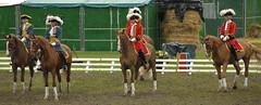 Garde rpublicaine (danieleclubfoto) Tags: chevaux quitation garderpublicaine