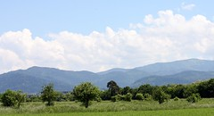 Rieselfeld landscape V (tillwe) Tags: blue green clouds landscape freiburg blackforest tillwe rieselfeld 201605