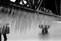 S2_051316_01 (Mark Dalzell) Tags: camera ohio bw white black film 35mm nikon cleveland rangefinder 400 icicles s2 arista