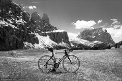 Pinrello Dogma am Grdner Joch (Torsten Frank) Tags: italien grden bike bicycle pass alpen fahrrad sdtirol altoadige pinarello roadbike marke gebirge rennrad dolomiten altabadia radfahren radsport langkofel grdnerjoch passogardena gadertal langkofelgruppe sellastock sellagruppe judefrara jufdefrea gherdina dogmaf8