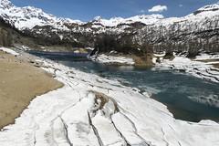 Lago del Devero 1 (Ciak88) Tags: panorama mountain snow alps verde primavera ice nature water lago spring nikon natura neve niko acqua alpi montagna mou ghiaccio devero alpedevero d5300
