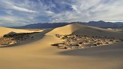 *untouched* (albert.wirtz) Tags: california usa sunrise nikon dunes unitedstatesofamerica northamerica deathvalley sonnenaufgang sanddunes kalifornien dnen stovepipewells deathvalleynationalpark vereinigtestaaten d700 mesquiteflatsanddunes sandnen albertwirtz