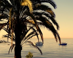 Con la mar en calma (camus agp) Tags: mar agua panasonic amanecer marmediterraneo fz150