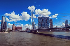Erasmusbrug, Rotterdam (Christiaan Spaan) Tags: rotterdam bridges erasmus erasmusbrug brug city river maas boulevard skyline sky line blue clouds white lines cityscape canon g7x powershot outdoor architecture building tall