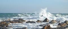 Cuando Lebrijano Canta se Moja el Agua (Tomás Hornos) Tags: sea mar orilla almuñécar costatropical waves mediterráneo españa agua comunidadespañola ola
