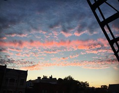 lines in the sky (ekelly80) Tags: dc washingtondc july2016 summer sunset sun light eveninglight colors sky clouds pink view fireescape ladder lines