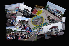 INDX3568 (Steve Guess) Tags: bus bristol open top southern vectis topless topper ecw rell tdl564k