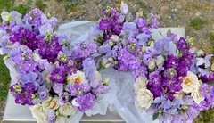 Lilac Bridesmaid's Bouquets (The Flowersmiths Wedding Flowers) Tags: theflowersmiths kentweddingflorist lilacflowers beautifulflowers bouquet bridalflowers bouquets bridesmaid posies naturalweddingflowers summerwedding stocks weddingfloristinkent
