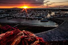 Italy - Sundown (Harvey Smith) Tags: marinaoflobra summer yacht pentax flowers sunset harvey smith photography 2016 massalubrense soft italy italia boat naples sea harveysmithphotography2016 harbour harbor starburst fishingnet campania ischia ngc