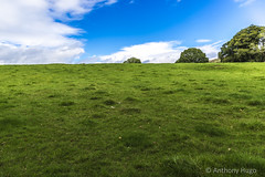 Balmaha Field (Tony Hugo) Tags: canon canon6d canoneos lochlomond grass green blue sky clouds balmaha scotland unitedkingdom gb