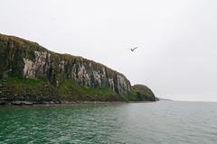 Cliff landscape V (danielfoster437) Tags: svalbard coastline landscape spitzbergen kste spitsbergen kustlijn landschaft klippe landschap cliff klip