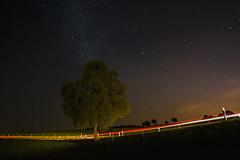 Milchstraenbaum (tan.ja1212) Tags: nacht night himmel sky sterne stars lzb langzeitbelichtung milchstrase milkeyway baum tree