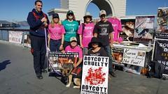 Fisherman's Wharf 092416 (Koreandogs) Tags:      dogmeat catmeat animalabuse southkorea boknal pyeongchang2018 imagineyourkorea hyundai samsung lg kia sk daewoo fila koreanairline asianaairline boycott