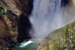Lower Yellowstone Falls Thunders (efchan) Tags: waterfall closeup landscape water power majesty