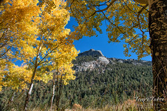 October 2, 2016 - Fall colors frame Bighorn Mountain in RMNP. (Tony's Takes)