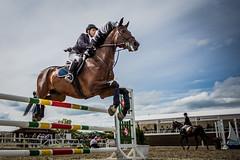 2383 ([]NEEL[]) Tags: horse concours hippique kharkiv ukraine white stable whitestable