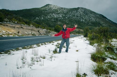 Tassie Snow
