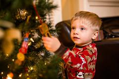 20141201_Christmas Decorating_IMG_0226 (Tom Cannon) Tags: louisvillephotographer kentuckyphotography kyphotography louisvillephotography kentuckykyphotographer thomascannonphotographyllc thomascannonphotography