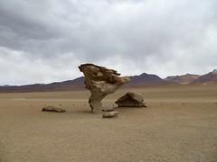 Woestijnen en meren - dag 2 en 3-50