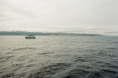 Bay (september.) Tags: ocean sea summer sky canada green film 35mm newfoundland boat waves canonae1 atlanticocean baybulls boattour canonfd whalewatchingtour canonfd28mmf28