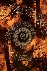 Addressable handheld test (- Hob -) Tags: longexposure trees lightpainting yellow spiral lightpollution wallsend arduino 6274 sooc hallgrounds digitallightwand ws2801 何後処理ん 无后处理