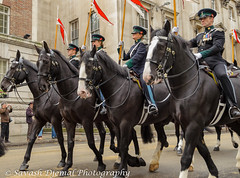 DSC_0120.jpg (Sav's Photo Gallery) Tags: street city uk horses people london outdoor candid military capital marchingband cavalry cityoflondon horseguards lordmayorsparade d7000 savash