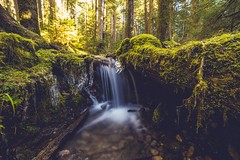 DSC00132 (mayaillusions) Tags: sol forest waterfall long exposure sony falls a7 duc