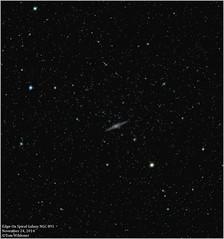 Spiral Galaxy NGC 891 (The Dark Side Observatory) Tags: november sky night canon stars spiral outdoors evening ngc andromeda galaxy nebula astrophotography astronomy nightsky cosmos constellation cosmology 6d astronomer ngc891 2014 spiralgalaxy canon6d astrometrydotnet:status=solved ioptron tomwildoner astrometrydotnet:id=nova901946