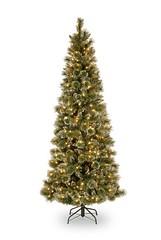 National Tree Company 7-1/2-Feet Glittery Bristle Pine Slim Tree with 600 Soft White LED Lights Get Rabate (wiby2) Tags: white tree pine lights soft slim with company national glittery bristle 712feet nationaltreecompany