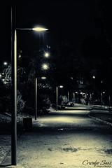 La lluvia en la oscuridad (cristofer.sanz) Tags: lighting parque rain weather night noche lluvia streetlight duotone farolas duotono splittoning