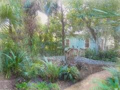 The gardener's cottage (Solly Avenue) Tags: painterly gardens photomanipulation garden impressionism digitalphotoart ipadpainting ipadsketching painterlyapp