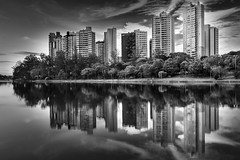 Igap lake (Londrina) (marcelo.guerra.fotos) Tags: brazil blackandwhite lake blancoynegro brasil landscape blackwhite lagoon londrina lagoigap igaplake mondedelaphoto ruby5