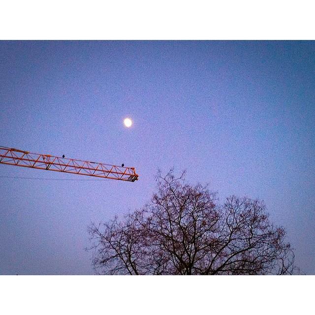 Pour 2015, jai demandé la lune. Voici lescalier pour la décrocher.   Je vous souhaite un très bon réveillon 😊 À très vite pour le meilleur ❤️