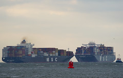 MSC FABIENNE , MSC AURORA & MCS ALIX (kees torn) Tags: o offshore tugs portofrotterdam maasmond mscfabienne containerschepen mscaurora mcsalix
