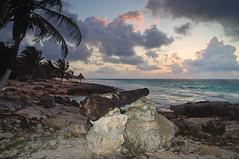 Apunta el Sol por el horizonte (Juan Ig. Llana) Tags: costa sol mxico mar tulum playa paisaje palmeras amanecer yucatn diamantek rivieramaya caribe quintanaroo