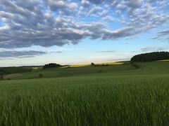 Fühlingsabend bei Mörschied (AndreasHerbert) Tags: frühling hunsrück mörschied