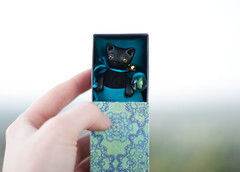 in blue bed (free_dragonfly) Tags: black cute art cat toys miniature clay matchbox polymer