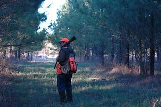 Alabama Luxury Quail Hunt - Guntersville 25