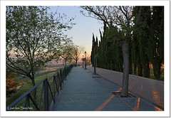 Paseo de Antonio Machado -Baeza (Lourdes S.C.) Tags: atardecer andaluca rboles paseo perspectiva baeza provinciadejan