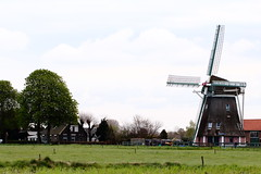 Wind mill (RW-V) Tags: holland mill windmill dutch moulin mhle nederland thenetherlands windmills paysbas molen hollands apeldoorn niederlande 2000views 100faves 200faves 150faves 80faves wenumwiesel 120faves 175faves canonef100mmf28lmacroisusm canoneos70d 055photowalks