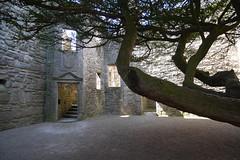 P9980602 (Patricia Cuni) Tags: castle scotland edinburgh escocia edimburgo castillo craigmillar