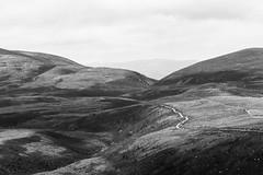 DSC03295.jpg (GregRafferty) Tags: uk blackandwhite texture scotland highlands europe unitedkingdom path gb cairngorms cairngormnationalpark