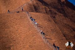 20160401-2ADU-049 Uluru