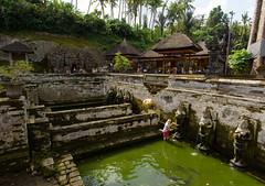 Goa Gajah (Corey Hamilton) Tags: travel bali temple goagajah