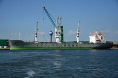 Norwid (DST_2108) (larry_antwerp) Tags: churchilldok zuidnatie chipolbrok norwid 9133422 antwerp antwerpen       port        belgium belgi          schip ship vessel