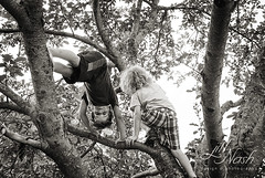 Goofy monkeys (grilljam) Tags: summer ewan cato treeclimbing 65yrs june2016 swangofarm